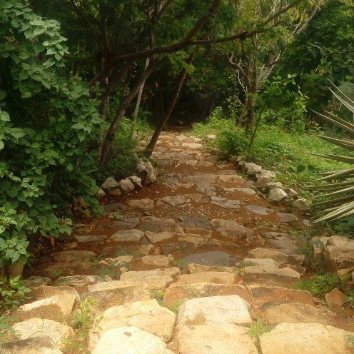 Uno de los caminos a la casa